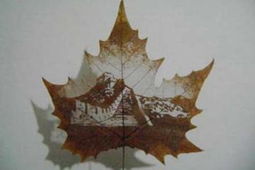 Độc đáo nghệ thuật khắc hình trên lá