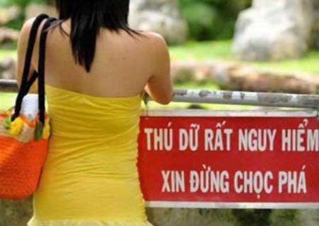 Những tấm ảnh cực độc chỉ có thể là Việt Nam
