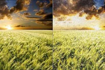 Chuyển từ một bức ảnh chụp thật sang bức tranh sơn dầu