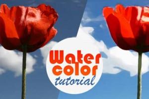 Chuyển ảnh chụp thành tranh vẽ màu nước trong Photoshop